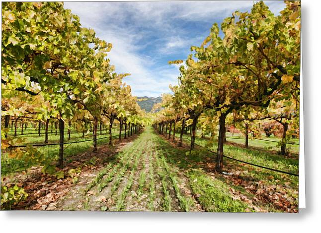 Wine Grapes Digital Art Greeting Cards - Vineyard Greeting Card by Paul Bartoszek