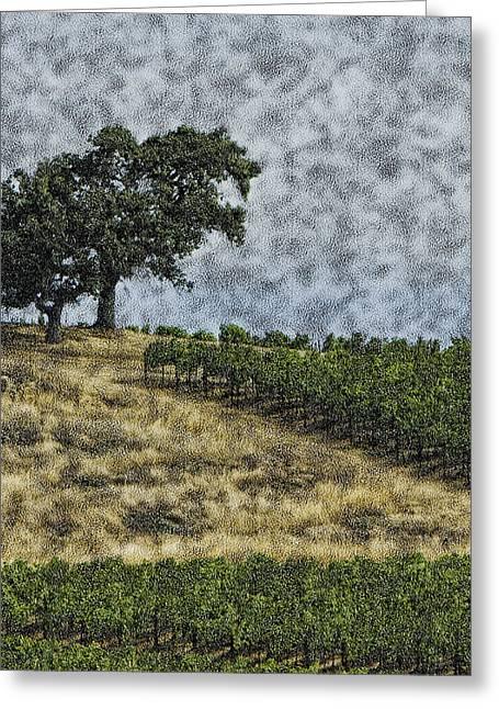 Grape Vineyard Greeting Cards - Vineyard Tree Greeting Card by Gilbert Artiaga