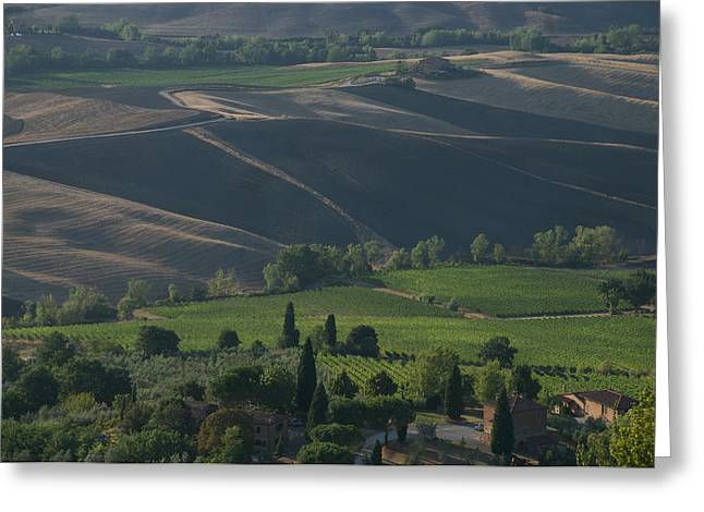 Italian Wine Greeting Cards - Vineyards Line The Countryside Greeting Card by Heather Perry