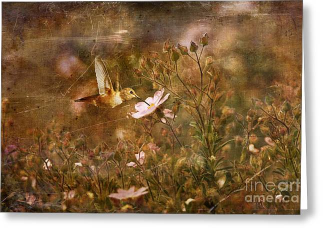Vintage Beauty In Nature  Greeting Card by Susan Gary