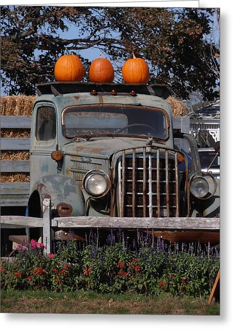 North Fork Greeting Cards - Vintage Harvest Greeting Card by Kimberly Perry