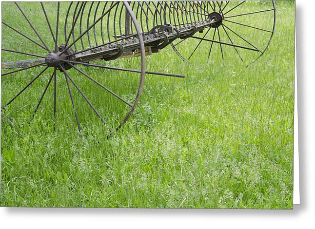 Hay Rake Greeting Cards - Vintage Hay Rake Spring Grass Greeting Card by Wilma  Birdwell