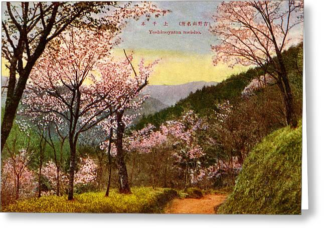 Cherry Blossoms Paintings Greeting Cards - Vintage Japanese Art 14 Greeting Card by Hawaiian Legacy Archive - Printscapes