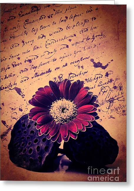 Vintage Passion Letters Greeting Card by Angela Doelling AD DESIGN Photo and PhotoArt