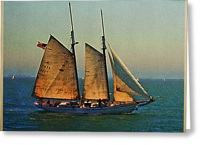Tall Ships Greeting Cards - Vintage Schooner Greeting Card by Flo Karp