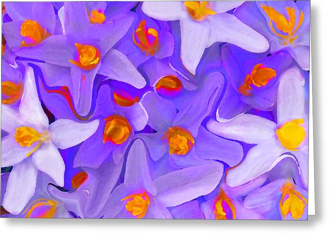 Floral Photos Mixed Media Greeting Cards - Viola Molti Greeting Card by Robert OP Parrish