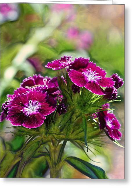 Small Flowers Greeting Cards - Violet Floral Imressions Greeting Card by Bill Tiepelman