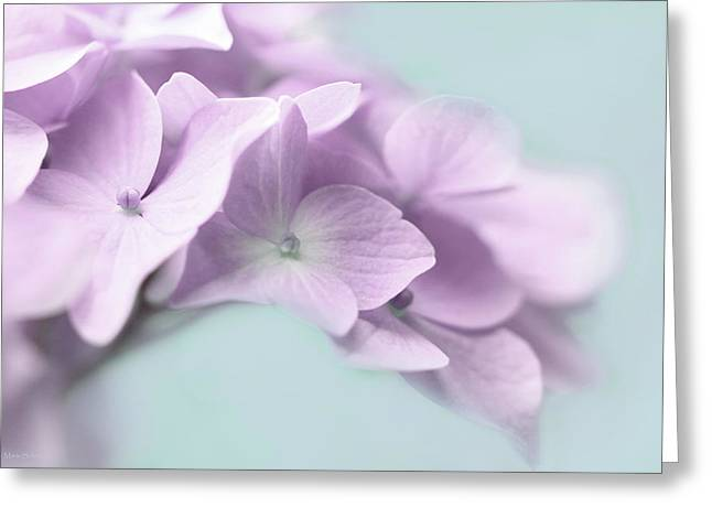 Purple Hydrangeas Greeting Cards - Violet Hydrangea Flower Macro Greeting Card by Jennie Marie Schell