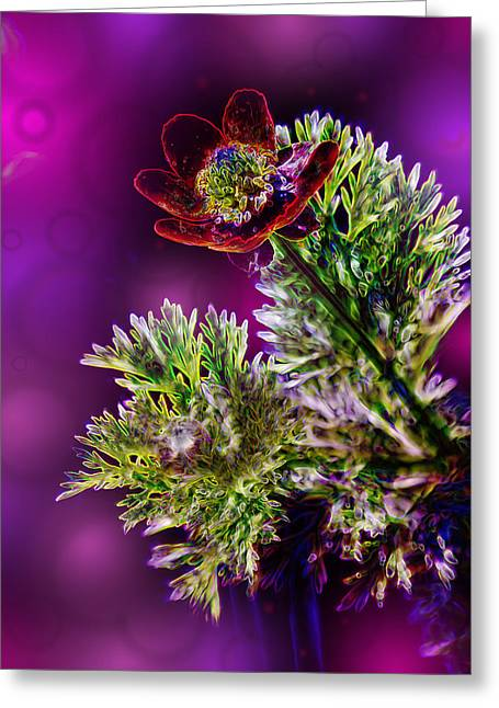 Purple Abstract Greeting Cards - Violet Labialize Flora Greeting Card by Bill Tiepelman