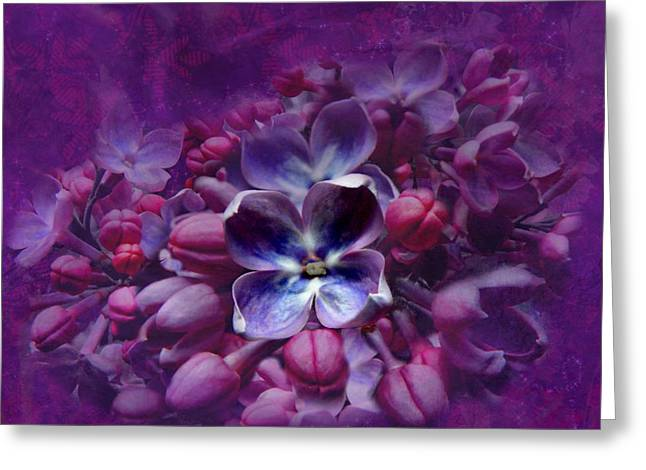 Lacy Floral Greeting Cards - Violet Lilac Greeting Card by Scott Hovind
