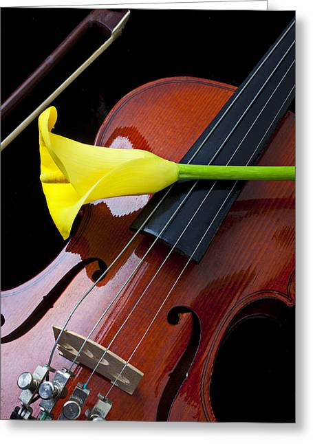 Viola Greeting Cards - Violin with yellow calla lily Greeting Card by Garry Gay