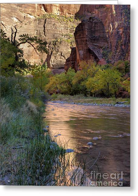 Temple West Greeting Cards - Virgin River Reflection Greeting Card by Sandra Bronstein