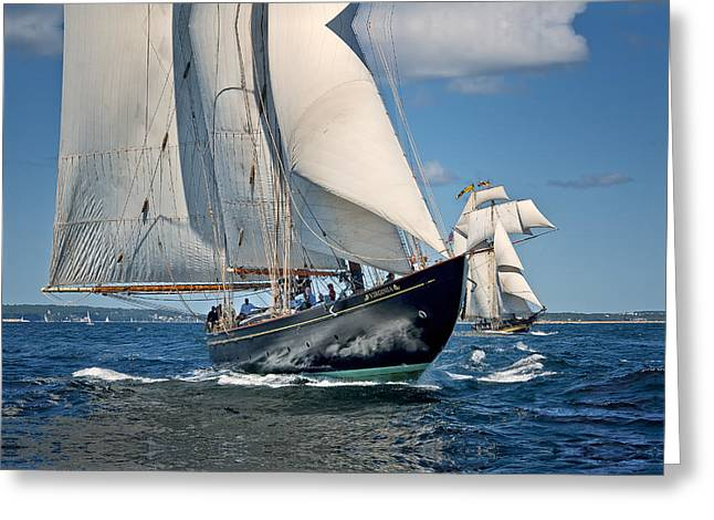 Schooner Greeting Cards - Virginia and Pride Greeting Card by Fred LeBlanc