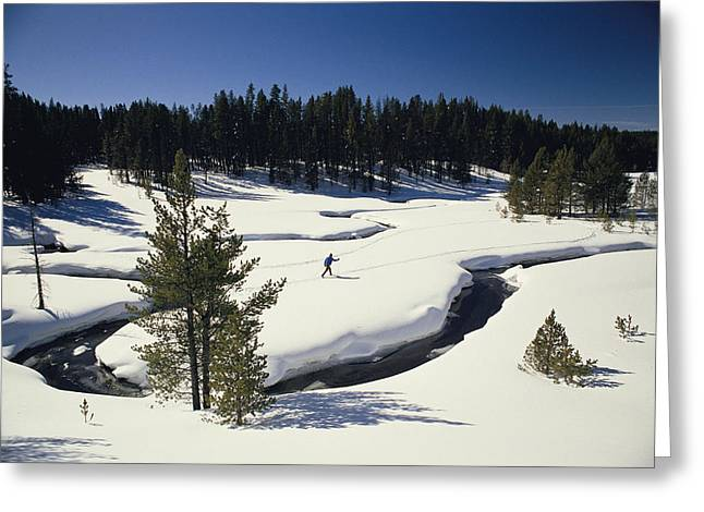 Refuges And Reserves Greeting Cards - Virginia Creek, With A Cross-country Greeting Card by Raymond Gehman