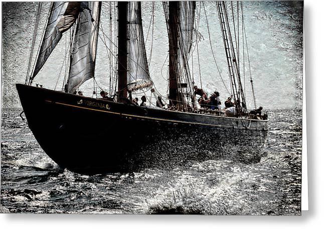 Schooner Greeting Cards - Virginia Greeting Card by Fred LeBlanc
