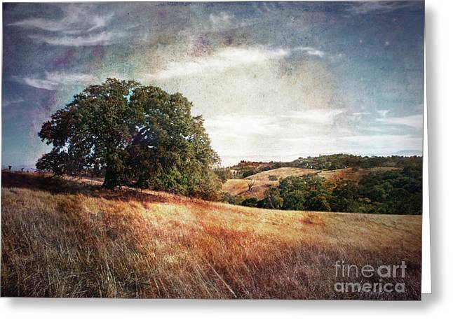 Open Space Preserves Greeting Cards - Vista of Distant Memory Greeting Card by Laura Iverson