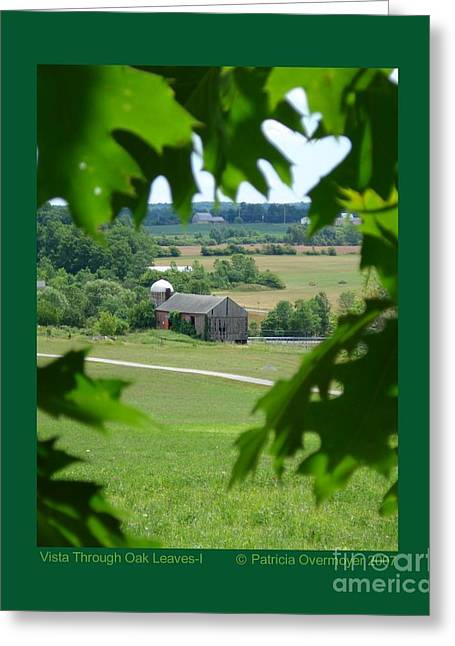 Vista Through Oak Leaves-i Greeting Card by Patricia Overmoyer
