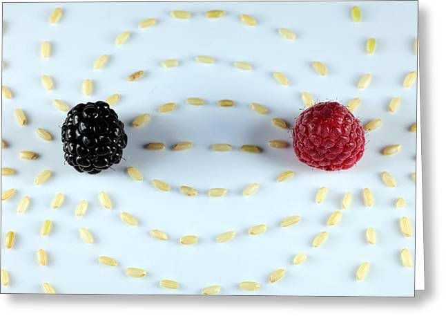 Vitalberry And Raspberry Depicting Magnetic Field Line Greeting Card by Paul Ge
