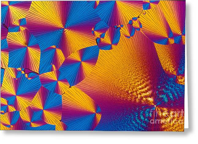 Transmitted Light Micrograph Greeting Cards - Vitamin H Crystal Greeting Card by Michael W. Davidson