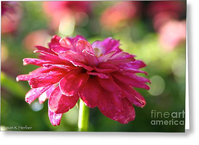 Flower Blossom Greeting Cards - Vivid Floral Greeting Card by Susan Herber