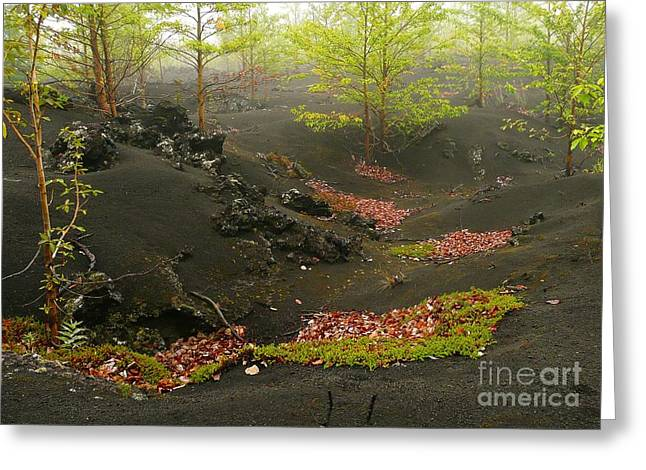 Volcanic Scenery Greeting Card by Bernard MICHEL