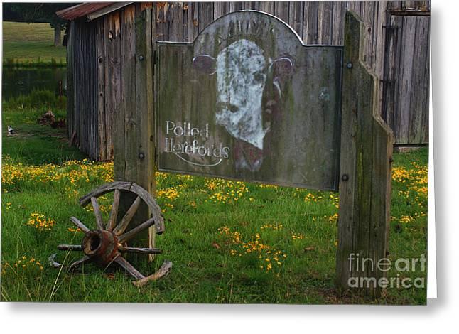 Wagon Wheels Greeting Cards - Wagon Wheel Farm Greeting Card by Benanne Stiens