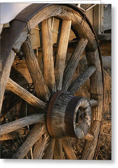 Conestoga Greeting Cards - Wagon Wheel On Covered Wagon At Bar 10 Greeting Card by Todd Gipstein