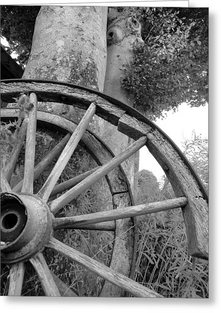 Fyn Greeting Cards - Wagon Wheels Greeting Card by Robert Lacy