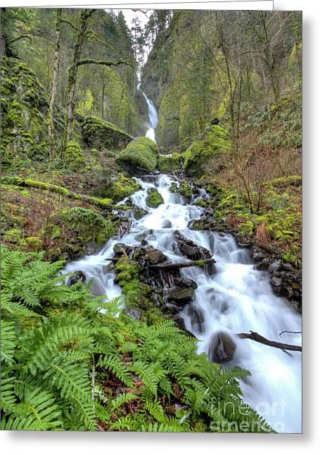 Moss Greeting Cards - Wahkeena Falls Oregon Waterfall Greeting Card by Dustin K Ryan