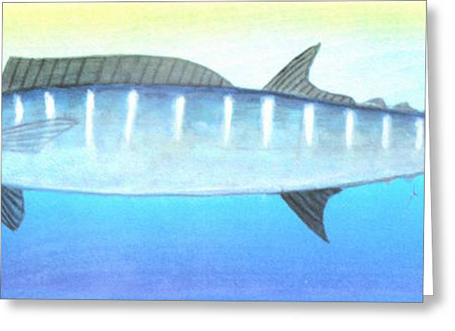 Wahoo Greeting Cards - Wahoo Greeting Card by Edward Walsh