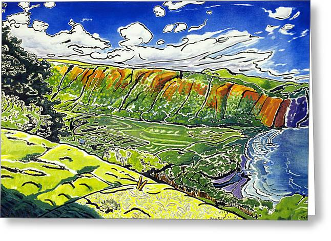 Hamakua Greeting Cards - Waipio Valley Greeting Card by Fay Biegun - Printscapes