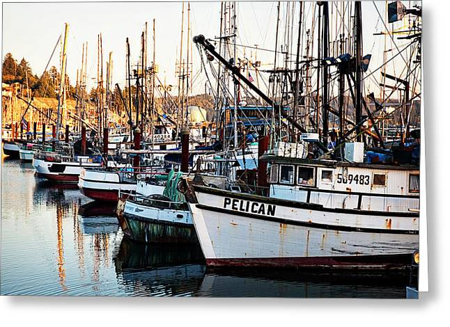 Oregon Coast Greeting Cards - Waiting Greeting Card by Becky Thompson