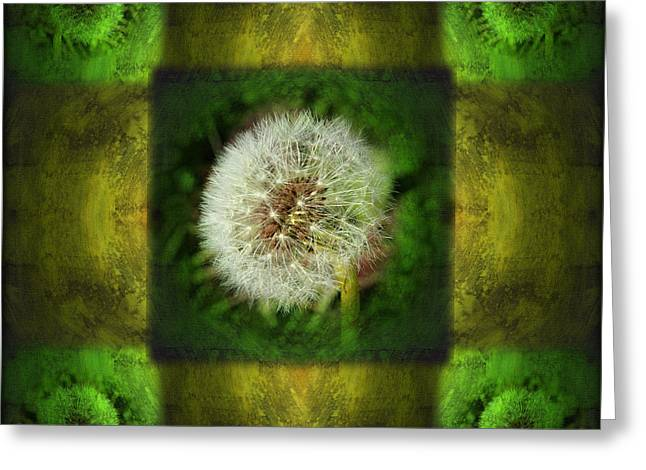 Dandelion Digital Greeting Cards - Waiting for a Wish Greeting Card by Laura Iverson