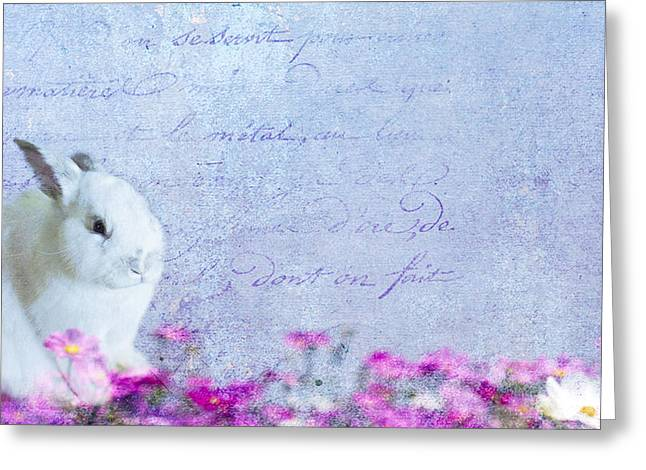 Waiting for Eggs Greeting Card by Rebecca Cozart