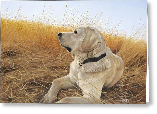 Golden Lab Greeting Cards - Waiting For The Birds Greeting Card by Tammy  Taylor
