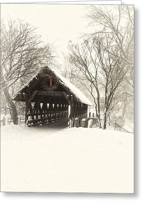 Winter Photos Photographs Greeting Cards - Waiting for the Sleigh Greeting Card by Andrew Soundarajan
