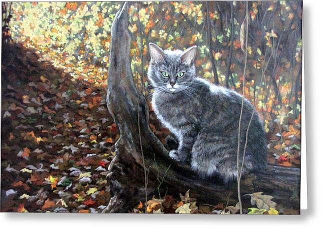 Sandra Chase Paintings Greeting Cards - Waiting in the Woods Greeting Card by Sandra Chase