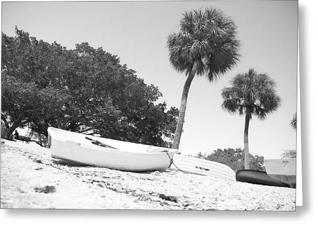 Bayfront Greeting Cards - Waiting on the Beach Greeting Card by Betsy C  Knapp