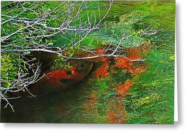 Clear Flowing Stream Greeting Cards - Waiting Patiently Greeting Card by Terril Heilman
