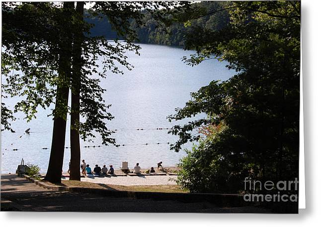 Walden Pond Greeting Cards - Walden Pond Greeting Card by John Small