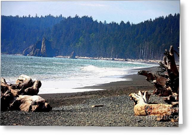 Forks Washington Greeting Cards - Walk on La Push Beach Greeting Card by Carol Groenen