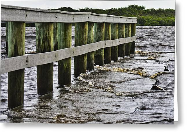 River Flooding Greeting Cards - Walk On The Alafia  Greeting Card by Lawrence Ott