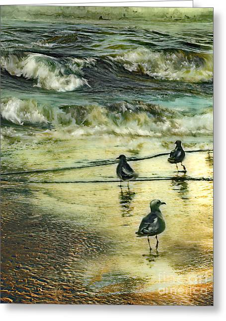 Sea Birds Mixed Media Greeting Cards - Walking at beach Greeting Card by Anne Weirich
