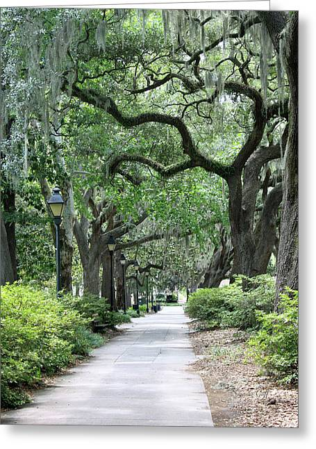 Savannah Parks Gardens Greeting Cards - Walking in the Park Greeting Card by Suzanne Gaff