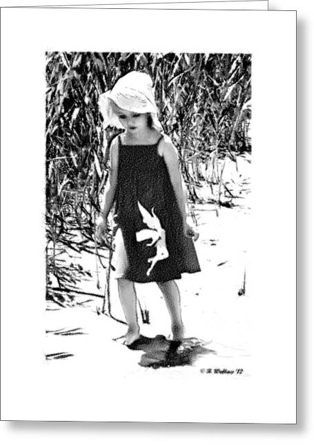 Walking The Shoreline Greeting Card by Brian Wallace