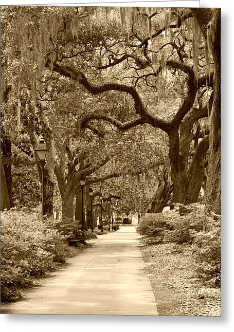 Sepia Digital Art Greeting Cards - Walking Through the Park in sepia Greeting Card by Suzanne Gaff