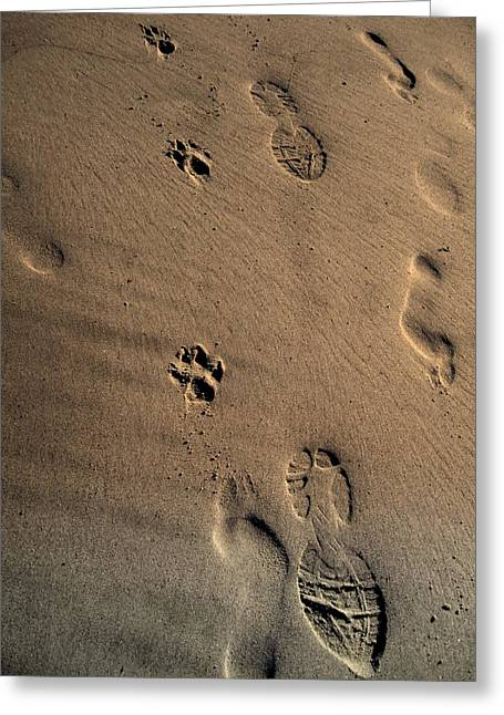 Dog Beach Print Greeting Cards - Walking with my dog Greeting Card by Susanne Van Hulst