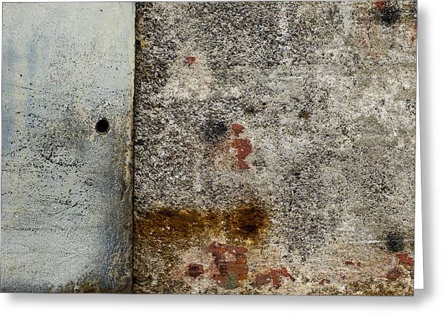 Wall Texture Number 10 Greeting Card by Carol Leigh