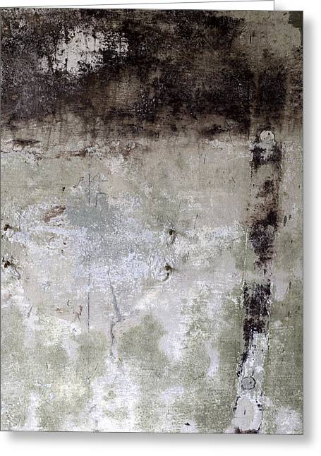 Wall Texture Number 11 Greeting Card by Carol Leigh
