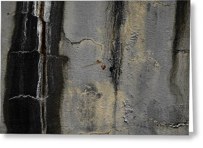 Wall Greeting Cards - Wall Texture Number 5 Greeting Card by Carol Leigh